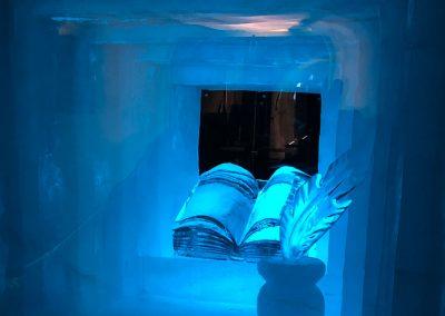 Eispalast-Buch